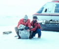 Two scientists holding seal pup. Helicopter in background.